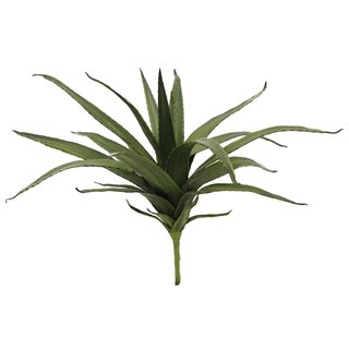 Europalms Aloe (EVA), green, 50cm