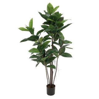 Europalms Rubber tree, 120cm