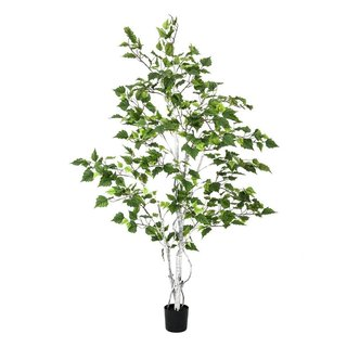 Europalms Birch Tree, 150cm