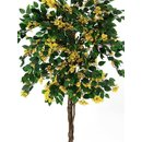 Europalms Bougainvillea, yellow, 180cm