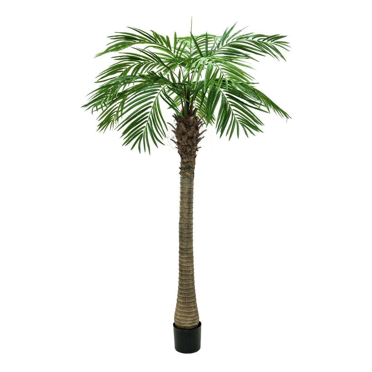 Europalms Phoenix palm tree luxor, 300cm